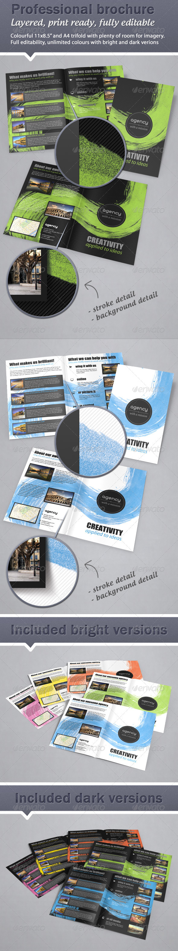 Colorful, Fresh Bifold Brochure - 11x8.5 & A4 - Corporate Brochures