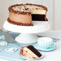 Chocolate layer cake - PhotoDune Item for Sale