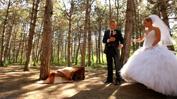 Newlyweds Walk In The Forest