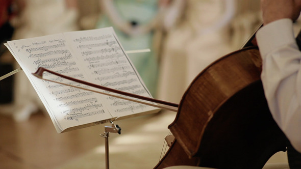 Musician Play The Cello