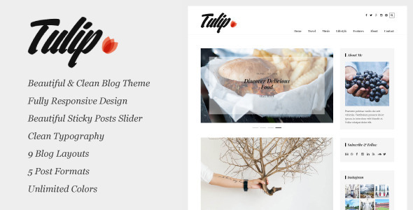 Tulip – Responsive WordPress Blog Theme