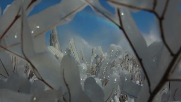 Winter Ice Blocks