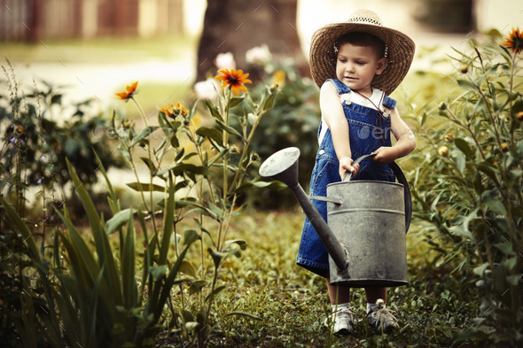 little boy with watering can in summer park - Stock Photo - Images