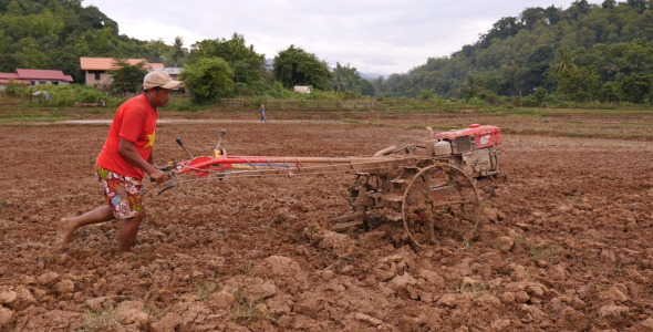 Rice Fields Being Ploughed