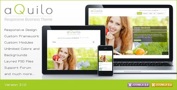 Aquilo - Responsive Joomla Theme - Joomla CMS Themes