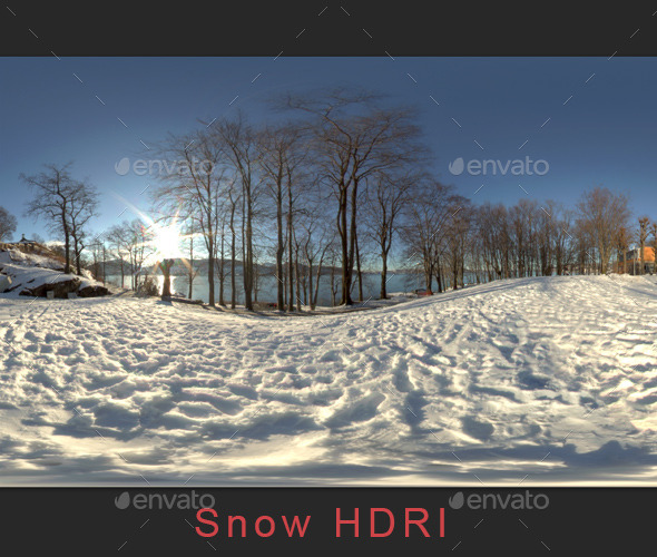 Snow HDRI Environment - 3DOcean Item for Sale