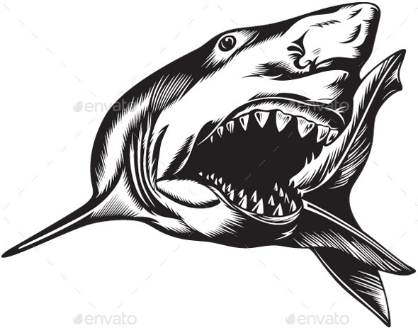 Aggressive Shark - Animals Characters