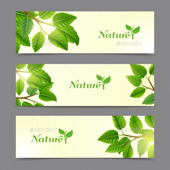 Green Leaves Eco Banners Set - Nature Conceptual