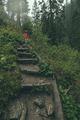 walking through storm - PhotoDune Item for Sale