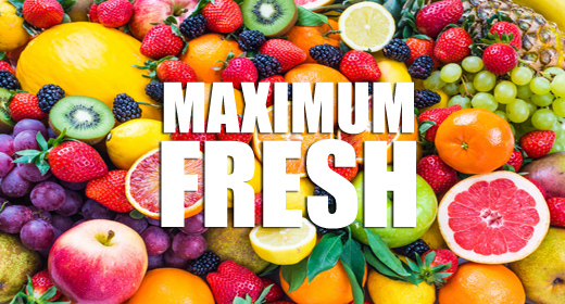MAXIMUM FRESH