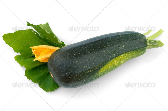 Green zucchini and flower - Stock Photo - Images