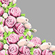 Pink Peony Flowers - GraphicRiver Item for Sale