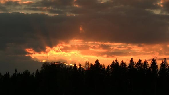 Sunset With Clouds Over a Forest 2