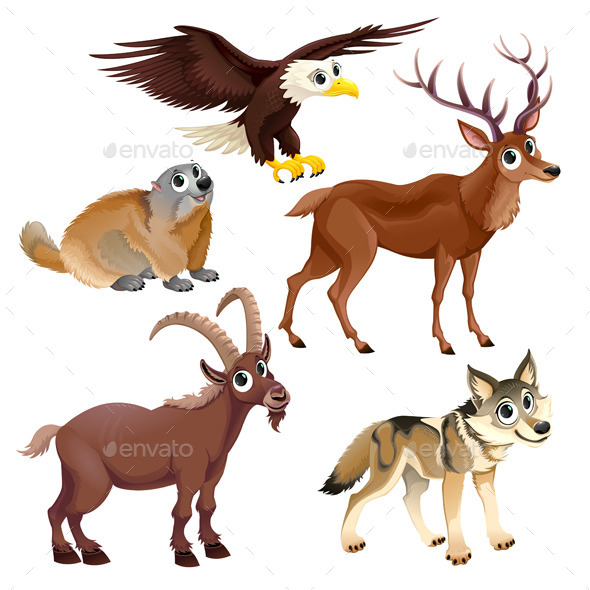 Mountain Animals - Animals Characters