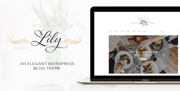 Lily – An Elegant WordPress Blog Theme