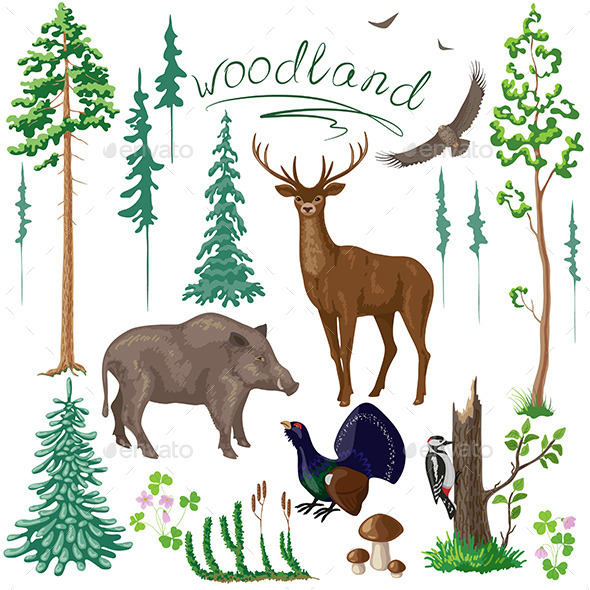 Woodland Plants and Animals Set - Animals Characters