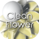 3D Clean Flower Logo - VideoHive Item for Sale