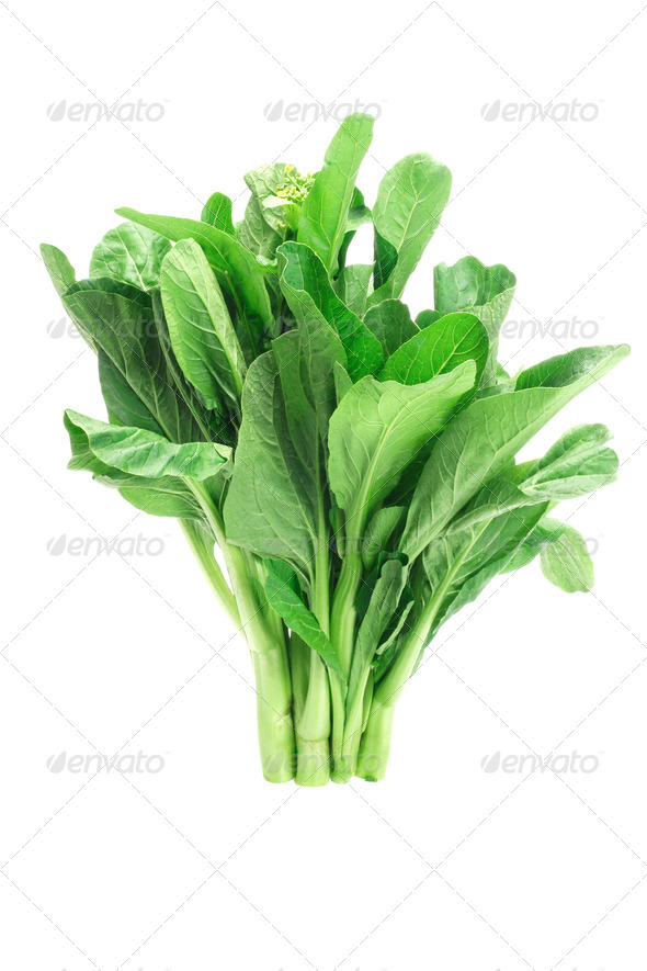 Mustard green - Stock Photo - Images