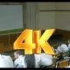 Lecture In Auditorium Of Medical University - VideoHive Item for Sale