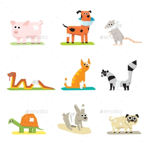 Veterinary Pet Health Care Animal Medicine Icons  - Health/Medicine Conceptual