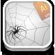Spider web & spider - GraphicRiver Item for Sale