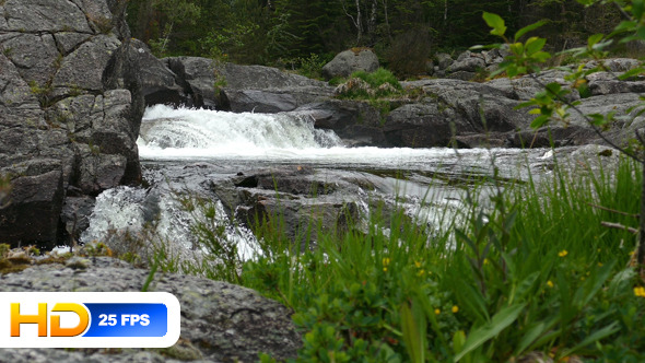 Mountain River and Rocks in Forest