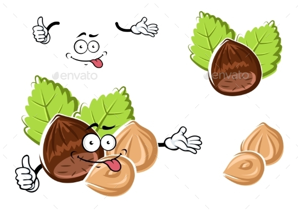Cartoon Whole And Peeled Hazelnut - Food Objects