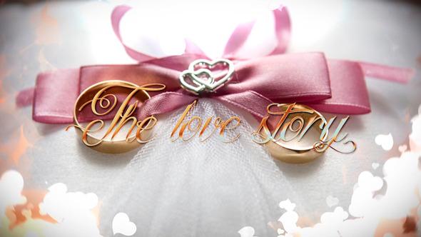 Wedding 12447379 Vip