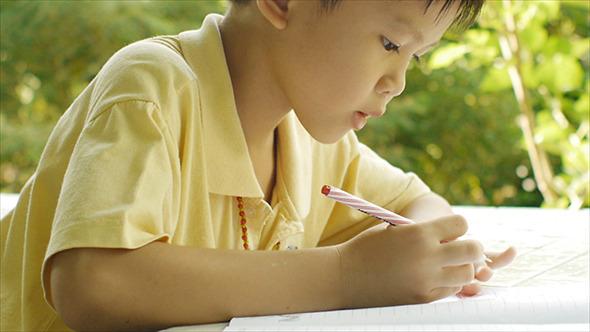 Young Boy Doing Homework 11