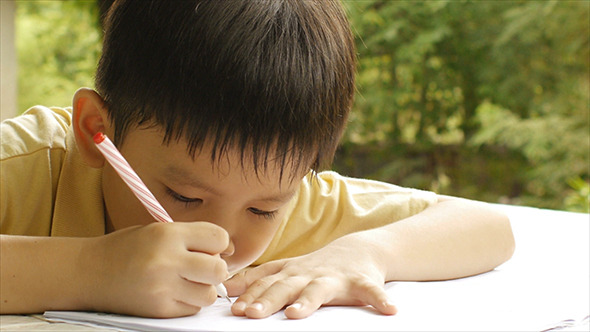 Young Boy Doing Homework 06