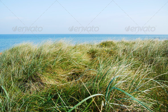 Baltic Sea - Stock Photo - Images