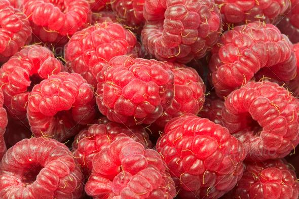 Raspberries - Stock Photo - Images