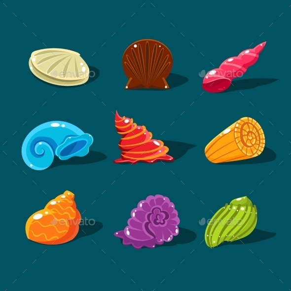 Vector Collection Of Colorful Shells - Travel Conceptual