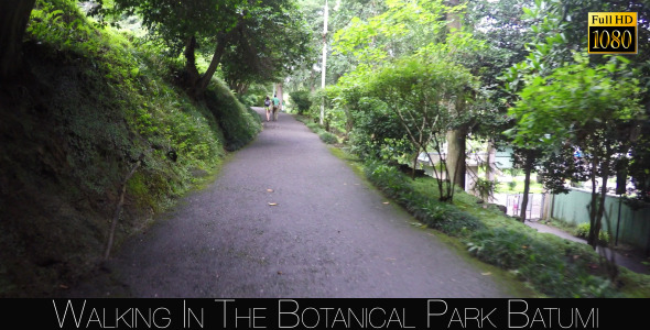 Botanical Park In Batumi