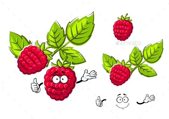 Ripe Isolated Red Rasberry Fruit - Food Objects