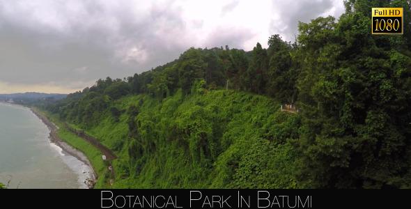 Botanical Park In Batumi 35