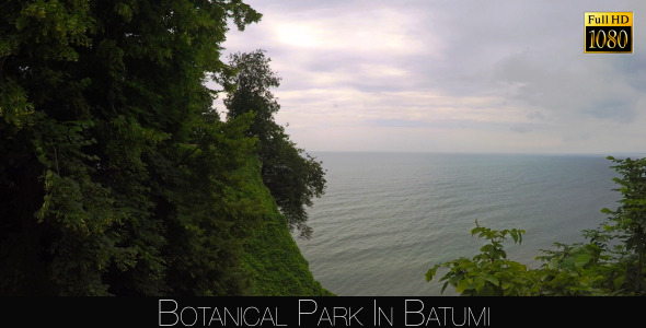 Botanical Park In Batumi 38