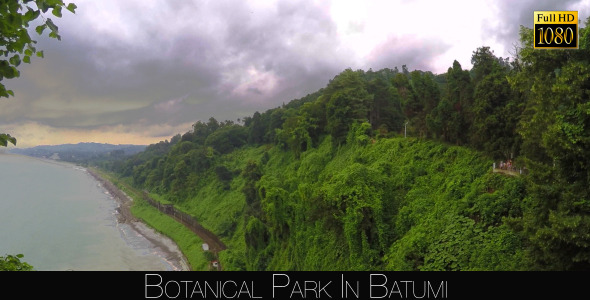 Botanical Park In Batumi 50