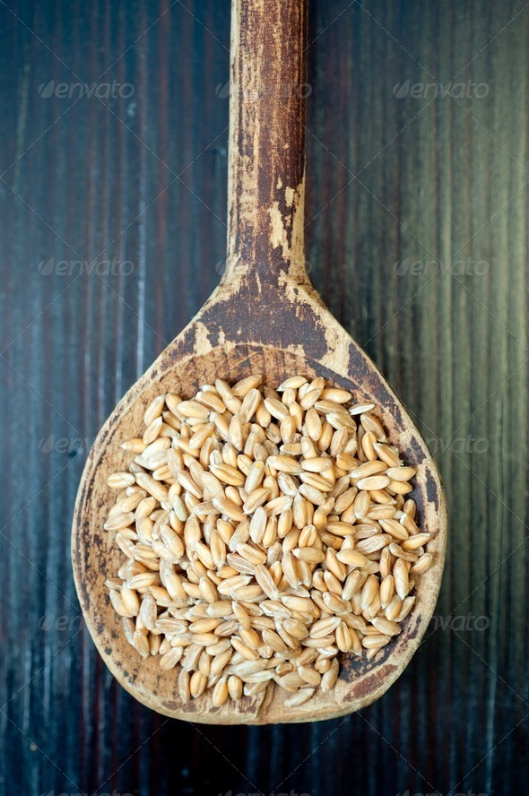 Spelt seeds - Stock Photo - Images