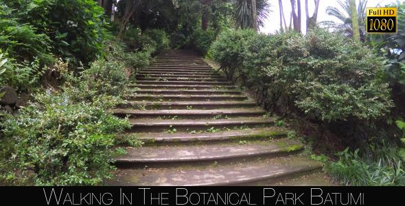 Botanical Park In Batumi 57