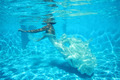 underwater bride - PhotoDune Item for Sale