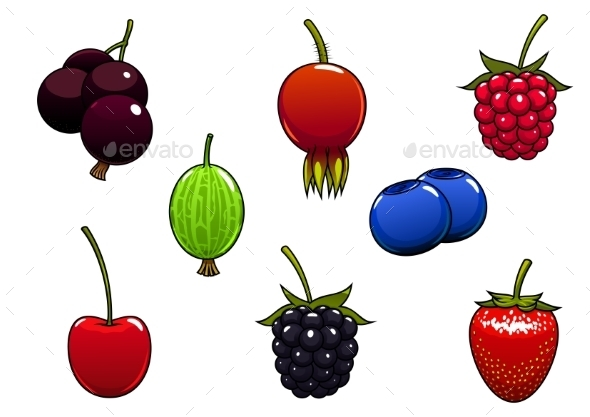 Sweet Ripe Juicy Isolated Berries - Food Objects