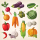 Set of Colorful Common Vegetables. - GraphicRiver Item for Sale