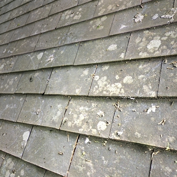 Grey Roof Tiles Seamless Texture By Lucky Fingers 3DOcean