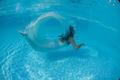 Beautiful woman girl dress underwater diving swim blue sunny day pool - PhotoDune Item for Sale