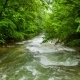 Calm Mountain River Flowing Down Among Greenery In - VideoHive Item for Sale