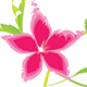 Pink Flower - GraphicRiver Item for Sale
