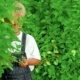 Happy Little Boy Hiding In Bushes - VideoHive Item for Sale