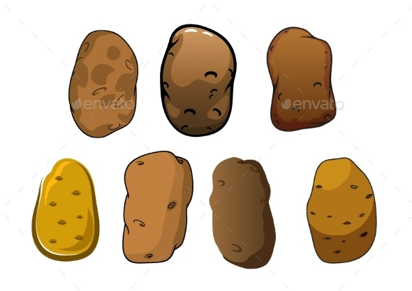 Fresh Potatoes Vegetables With Brown Skin