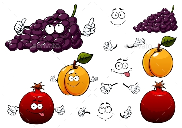 Grape, Apricot And Pomegranate Fruits - Food Objects